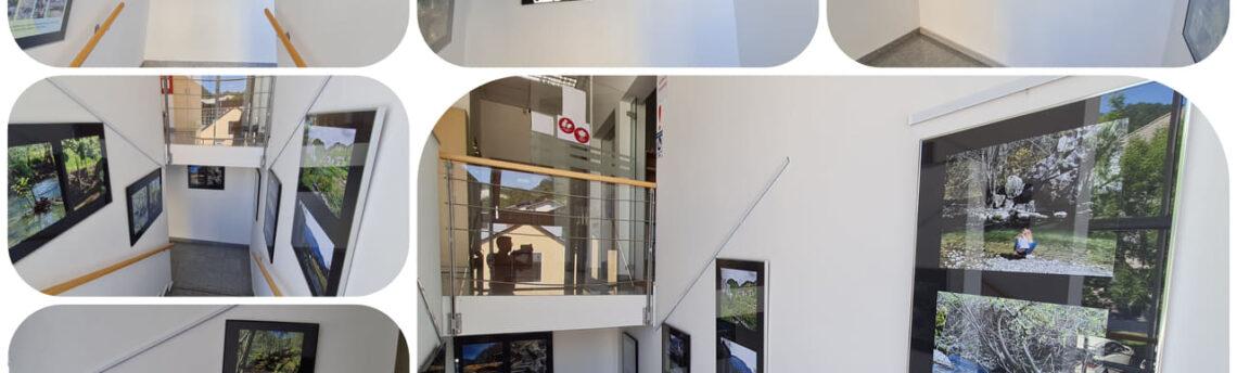 Medija od izvira do izliva v Savo – KD Svoboda Kisovec, skupina FOT.KI – razstava na stopnišču Knjižnice Zagorje od 15. 10. dalje